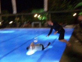 Getting thrown in the pool on my Birthday, joined unexpectedly by Frenchie!